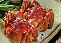 热爱吃蟹的典型人物——苏东坡