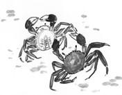 大闸蟹-蕴含着中国人的文化情结