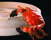 大闸蟹—文人墨客的精神粮食
