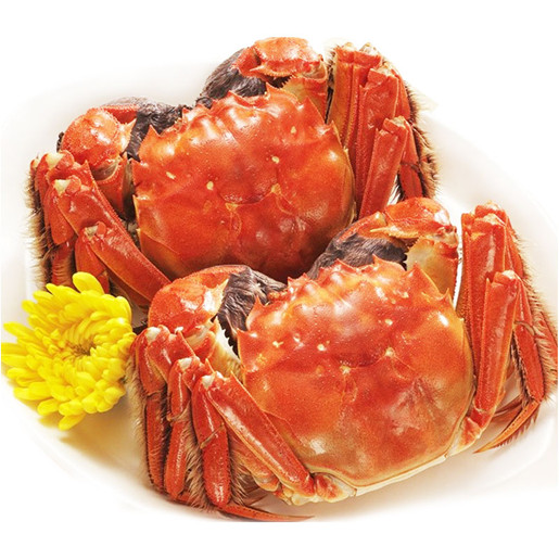 巴仙阳澄湖区域大闸蟹零售 家庭型