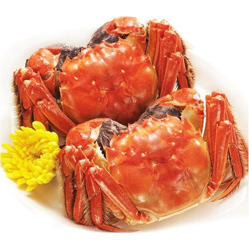 巴仙阳澄湖区域大闸蟹零售 温馨型