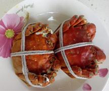 巴仙阳澄湖大闸蟹零售 团圆型